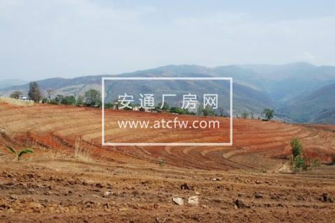 上海青浦徐泾镇12亩高性价比土地加地上构筑物一并转让