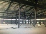 出租仁和底层5000方标准钢架厂房