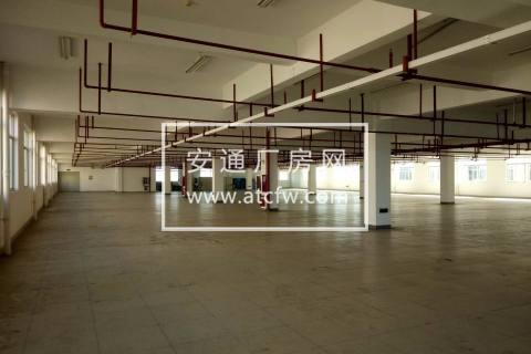 便宜仓库500到2000方可分租电商淘宝物流仓储