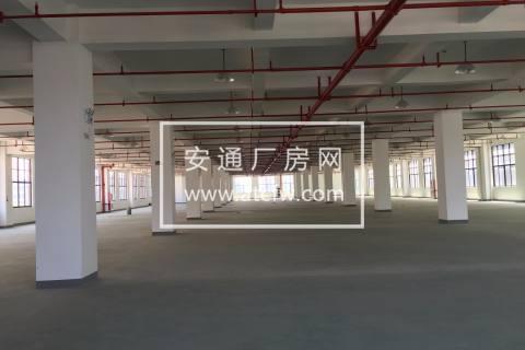 余杭开发区大面积厂房仓库出租