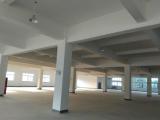 良渚460方厂房出租,另标配住宿环境