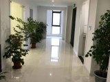 松江独栋花园式2200平厂房出售 无税收要求 带天燃气