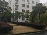 松江大平层1100平厂房出售 配2部电梯 104地块