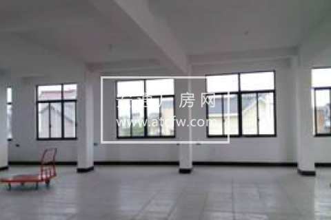 网店办公楼2000平米仓库出租