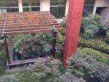 滨海1300平方仓库出租办公楼出租环境优美花园式