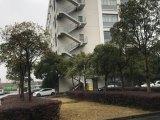 松江1200平厂房 近G60 配2部电梯 可环评