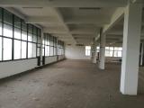 太白镇新太公路厂房两层3000平米出租