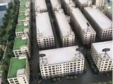 滨海小微园五楼,1191平方2060米大平面厂房出售
