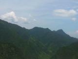 芳野插岙垄村高速路口8000平米山林出售