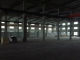 临港工业园3000平米厂房出租,带杭车