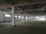 湖东10000平米厂房出租,单层或多层标准厂房