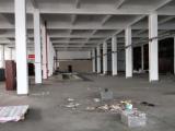 滨海新围路1楼1500平米厂房出租