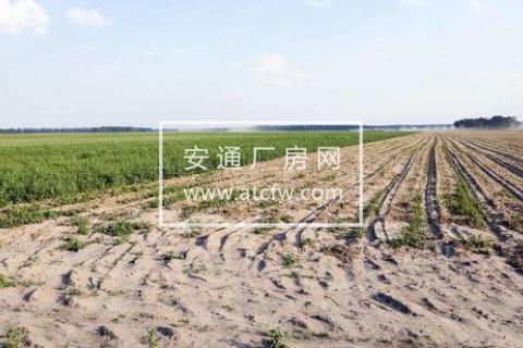 江山6750平米土地厂房及房屋出售