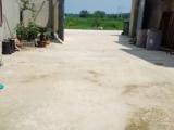 仁和集高速路口800平米厂房出售