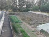 农家院1600平米出租,平房5间,水电齐全,有院墙