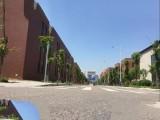 重庆两江新区独栋厂房出租钢构+框架最后两栋