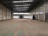 平湖47000平方可分租 高12米全新厂房 配电大