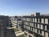 松江  多层厂房 整栋或分层出租 104地块 近高速周围配套全