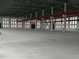 川沙单层2500平贸易仓储组装检测新能源新材料