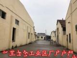 江苏太仓单层厂房出租非中介租金低