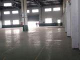 蓬朗镇多栋单层3000平厂房