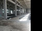 滨海出租1楼2000平厂房新出入方便适合各种行业