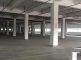 嘉善大云镇一楼1200平方标准厂房出租