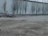 包钢高速出口南便宜租 厂房