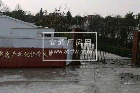 曲靖珠街桂花20亩养殖场对外出租