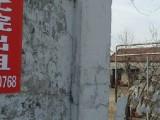 枣薛前线,鲁南种猪场对过 厂房