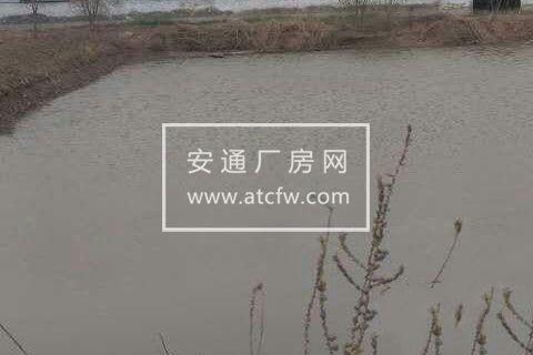 出租出售仙人湖东临 厂房 6000平米