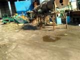 开平区钢材市场2000方厂房出租