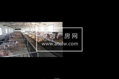抚顺县救兵镇王木村关山湖3000方厂房出租