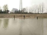 黄河打渔张森林公园