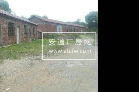 信州区朝阳镇团结村新320国道旁700方土地出租