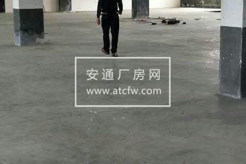 武义县桐琴工业区5000方厂房出租