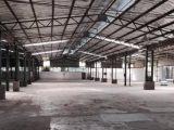 武义县客运中心周边2500平方厂房出租