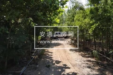 薛城区复元二路24400方土地出售