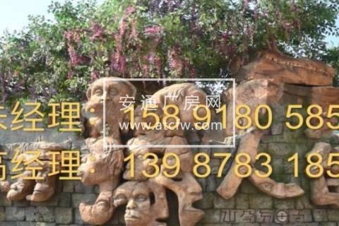 楚雄区元谋县元马镇龙泉村民委员会99999方土地出租