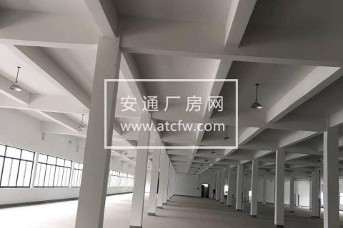 皋埠镇临江路标准厂房出租