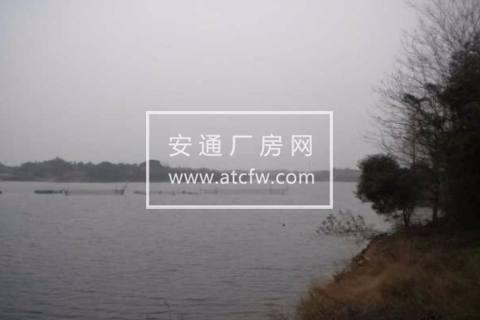 衢江区高家镇安仁村12572方土地出售