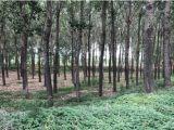 北京周边大七环密涿高速旁20000方土地出售