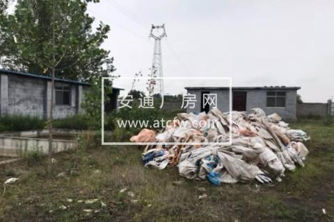 薛城区张范镇附近5000方土地出租