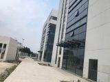 新区独栋6500方厂房出租(医疗行业)