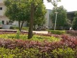 咸安区工业园2000方仓库出租