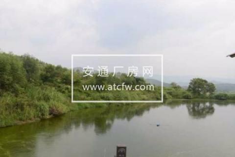 曲江区大塘镇86000方土地出租
