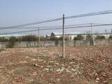 沭城镇区十字南215旁5000方土地出租