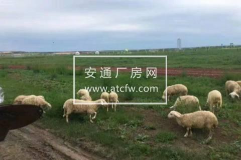 新浦区云台前关500方土地出售