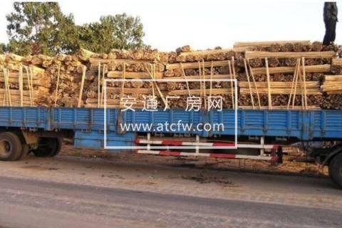广安区罗渡航道码头4000方土地出售