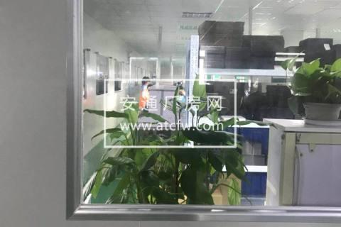 郭巷独门独院10000方厂房出租